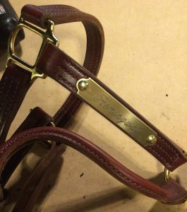 How to Add an Engraved Plate to a Leather Halter (or Belt) Using Standard Toolbox Tools